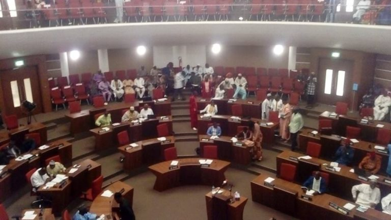Why Did The National Assembly Adjourn Monday 18 MAY                                            Sitting?